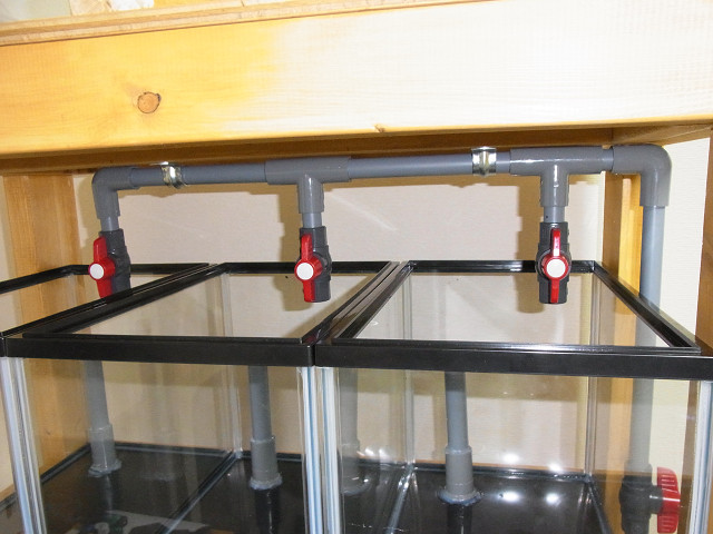 水槽を設置してオーバーフロー水槽の給水配管を仮組み