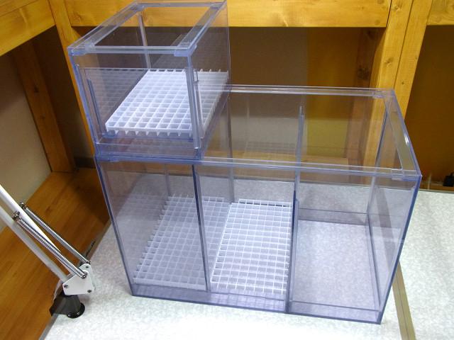 自作濾過槽にウールボックスをセット