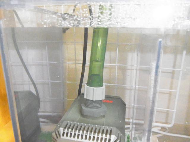 多段連結OF水槽の濾過槽に注水