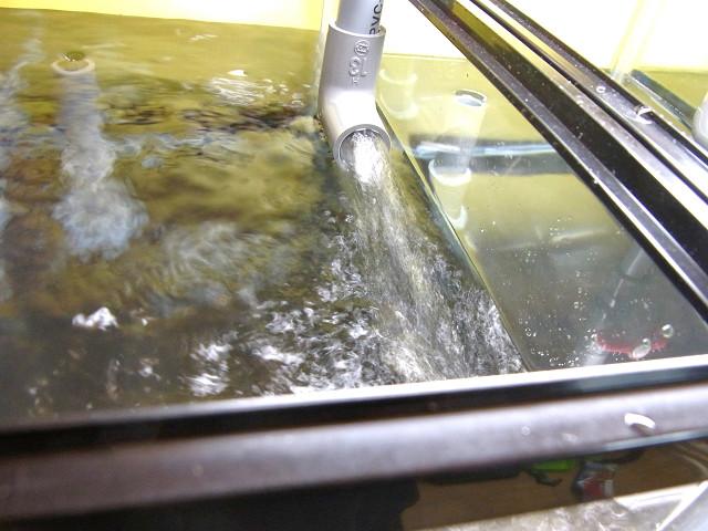 多段連結オーバーフロー水槽に勢いよく給水