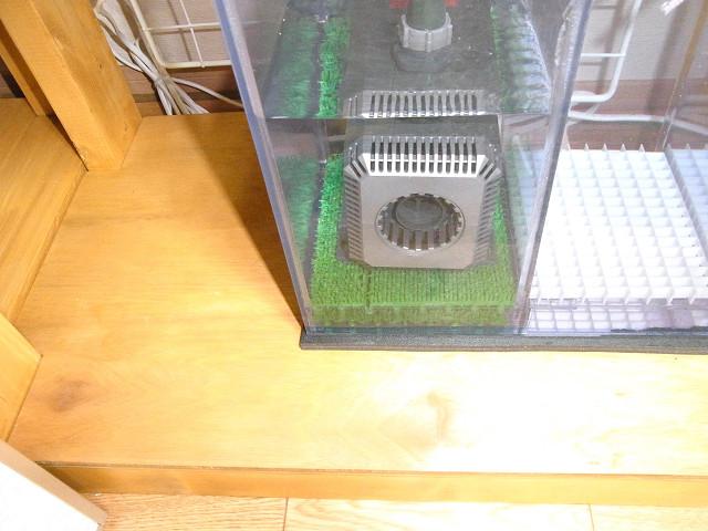 濾過槽やウールボックスに敷いた人工芝