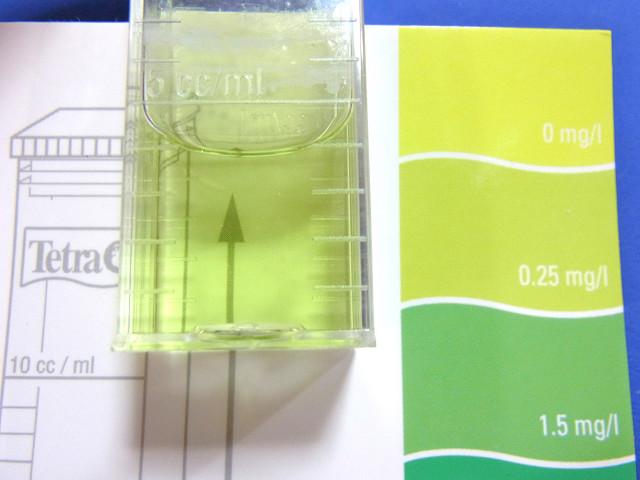 キュアリング水槽のアンモニア濃度