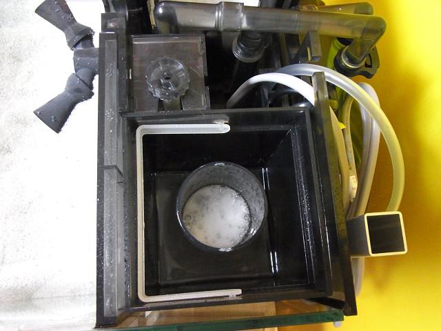 海道システムのプロテインスキマーの泡