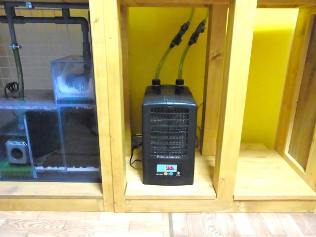 海道システムを設置した自作水槽台