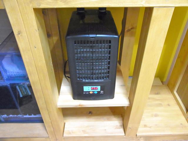 自作水槽台の棚板にクーラーをセット