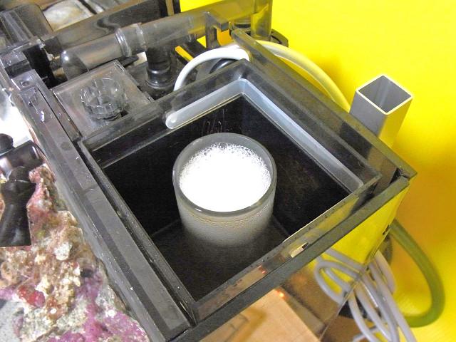 立ち上げ中の海道システムのプロテインスキマーのゴミ受けカップ