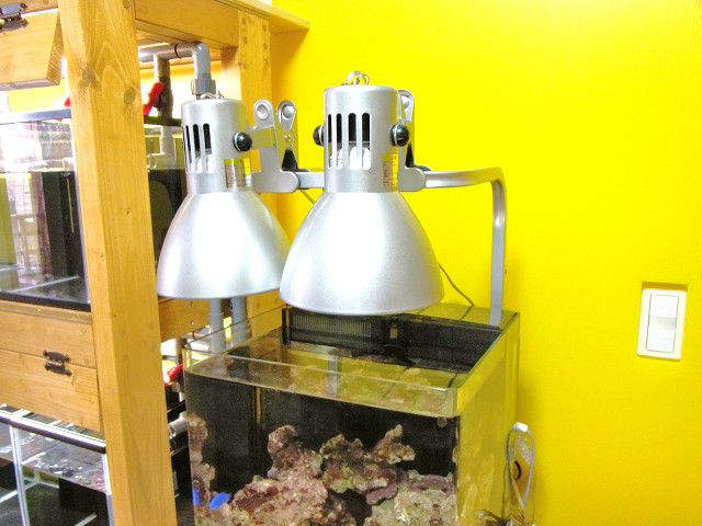 海道システムの照明アームにカミハタのヴォルテスを取り付け