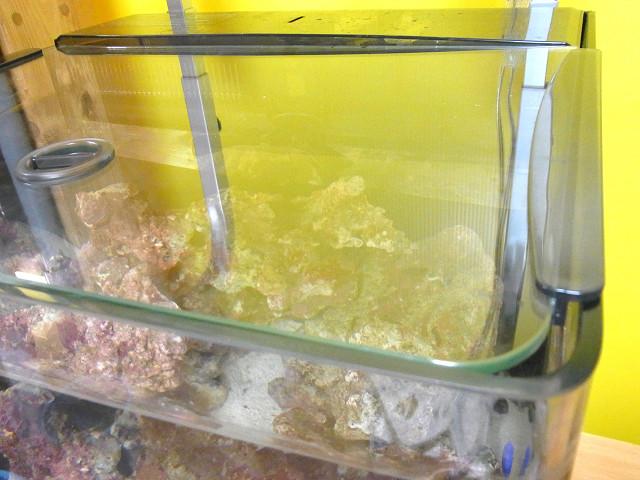 海道システムのガラスフタ