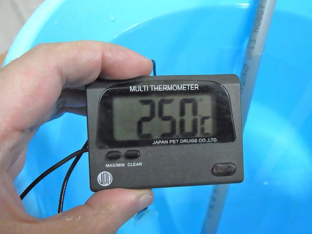 水温が25度になった
