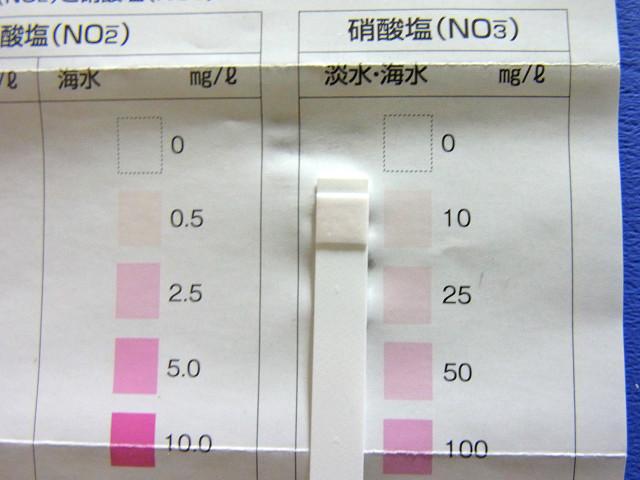 海道システムの硝酸塩濃度
