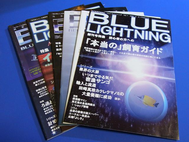 ブルーライトニング(BLUE LIGHTNING)海水館