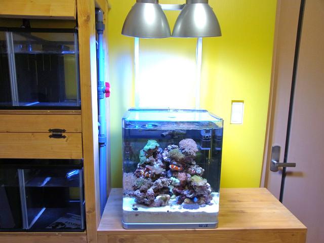 海道システム(海道水槽)の照明を取り外す