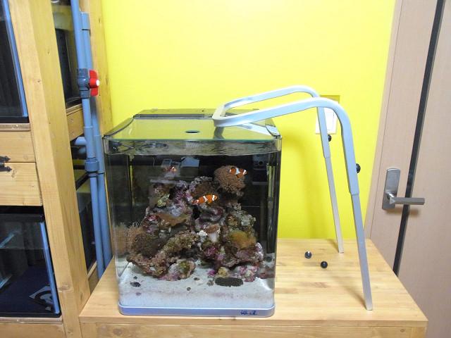 海道システム(海道水槽)の照明アームを取り外す