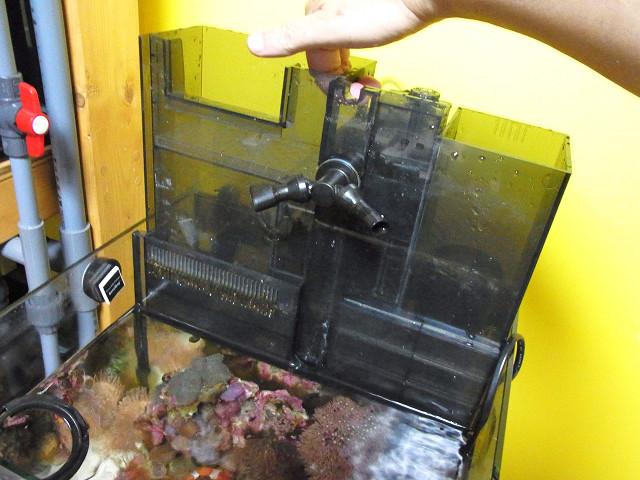 海道システム(海道水槽)の濾過槽掃除